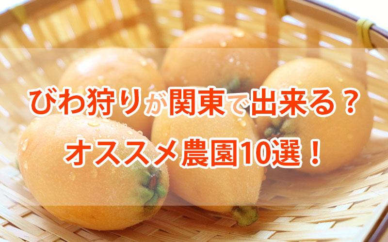 びわ狩り関東農園10選